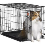 Crate training is our most recommended way of puppy potty training
