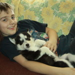 Siberian husky puppies can be a lot of fun with kids!