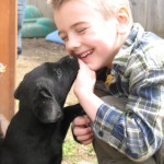 Puppy kisses from a black labrador retriever in the summer of 2009