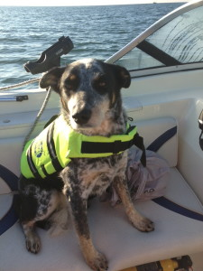 Mya enjoying a boat ride
