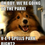 v-e-t spells park, right