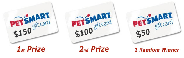 Puppy Photo Contest Prizes